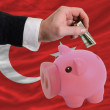 Dollar into piggy rich bank and  national flag of turkey — Стоковая фотография