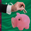 Dollar into piggy rich bank and  national flag of turkmenistan — 图库照片