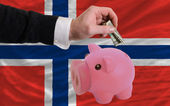 Dollar in piggy rijke bank en de nationale vlag van noorwegen — Stockfoto