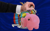 Dollar into piggy rich bank and flag of american state of new y — Stock Photo
