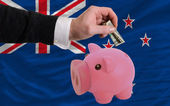 Dollar into piggy rich bank and national flag of new zealand — 图库照片