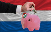 Dollar in piggy rijke bank en de nationale vlag van paraguay — Stockfoto