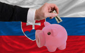 Dollar in reich sparschwein und nationalflagge slowakei — Stockfoto