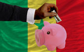 Dollar into piggy rich bank and national flag of senegal — Стоковое фото