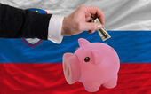 Dollar into piggy rich bank and national flag of slovenia — Stock Photo
