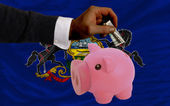 Dollar into piggy rich bank and flag of american state of penns — Stock Photo