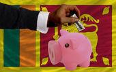 Dollar in piggy rijke bank en de nationale vlag van srilanka — Stockfoto