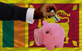 Dollar into piggy rich bank and national flag of srilanka — Stock Photo