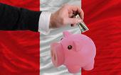 Dollar in piggy rijke bank en de nationale vlag van peru — Stockfoto