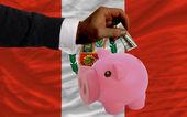 Dolar w piggy bank bogaty i flagi narodowej z peru — Zdjęcie stockowe