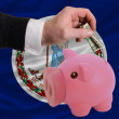 Dollar into piggy rich bank and  flag of american state of virgi — Stock Photo