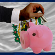 Dollar into piggy rich bank and  flag of american state of west - Stock fotografie