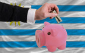 Dollar into piggy rich bank and national flag of uruguay — Стоковое фото