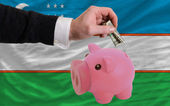 Dollar into piggy rich bank and national flag of uzbekistan — Stock Photo