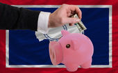 Dollar into piggy rich bank and flag of american state of wyomi — Stock Photo