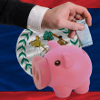 Funding euro into piggy rich bank national flag of belize - Foto de Stock  