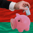 Funding euro into piggy rich bank national flag of belarus - Foto de Stock  