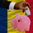 Funding euro into piggy rich bank national flag of  of chad - Stockfoto