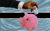 финансирование евро в богатые свинка банка национальный флаг ботсваны — Стоковое фото