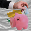 Funding euro into piggy rich bank national flag of cyprus - Foto Stock
