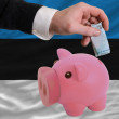 Funding euro into piggy rich bank national flag of estonia - Stock Photo