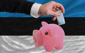 Funding euro into piggy rich bank national flag of estonia — Stock Photo