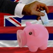 Funding euro into piggy rich bank flag of american state of hawa — Stockfoto