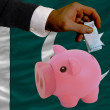 Funding euro into piggy rich bank national flag of pakistan - Stock Photo