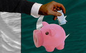 Funding euro into piggy rich bank national flag of pakistan — Stock Photo