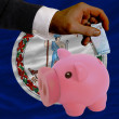 Funding euro into piggy rich bank flag of american state of virg - Foto Stock
