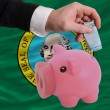 Funding euro into piggy rich bank flag of american state of wash - Stock Photo
