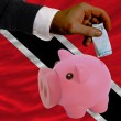 Funding euro into piggy rich bank national flag of trinidad toba - Stock Photo