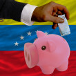 Funding euro into piggy rich bank national flag of venezuela - Stock Photo