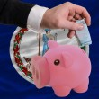 Funding euro into piggy rich bank flag of american state of virg - Stock Photo