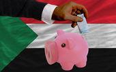 финансирование евро в богатые свинка банка национальный флаг судана — Стоковое фото