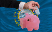 Funding euro into piggy rich bank flag of american state of sout — Stock Photo