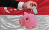 Finansiering euro i piggy rika bank nationella flagga singapore — Stockfoto