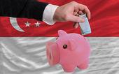 финансирование евро в богатые свинка банка национальный флаг сингапура — Стоковое фото