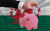Funding euro into piggy rich bank national flag of wales — Stock Photo