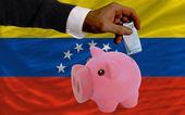 Finanziamento euro in rich piggy banca nazionale bandiera del venezuela — Foto Stock