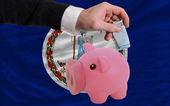 Funding euro into piggy rich bank flag of american state of virg — Стоковое фото