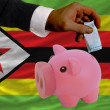 Funding euro into piggy rich bank national flag of zimbabwe    — Stock Photo