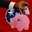Funding euro into piggy rich bank flag of american state of tenn - Stock Photo
