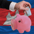 Funding euro into piggy rich bank national flag of cambodia - Stock Photo
