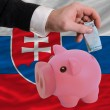 Funding euro into piggy rich bank national flag of slovakia - Stock Photo