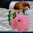 Funding euro into piggy rich bank flag of american state of west - Stock Photo