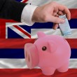 Funding euro into piggy rich bank flag of american state of hawa - Photo