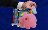 Funding euro into piggy rich bank flag of american state of new — Stockfoto