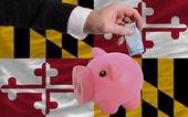финансирования евро в богатые свинка банка флаг американского государства марии — Стоковое фото