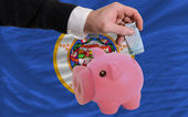 Funding euro into piggy rich bank flag of american state of minn — Stock Photo
